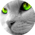 аватар карыстальніка Мыши братья